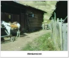 atc4b1nc4b1 seven kovboy 168